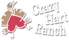 Crazy Hart Ranch